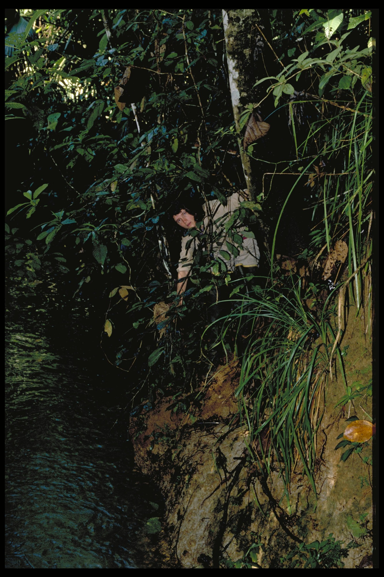 Ornithological Fieldwork, Panama, STRI