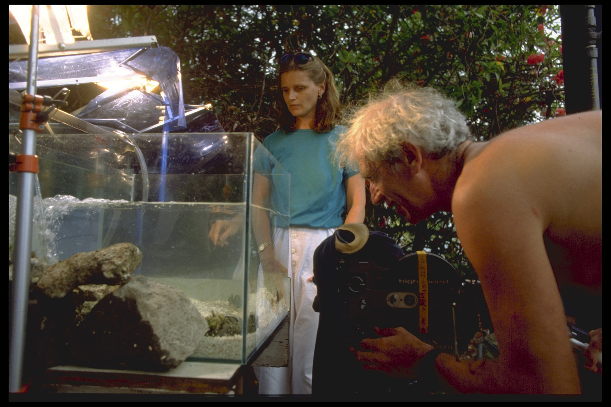 images for Filming in an Aquarium Filled with Water, with Marine Biologist Nancy Knowlton, Panama, STRI