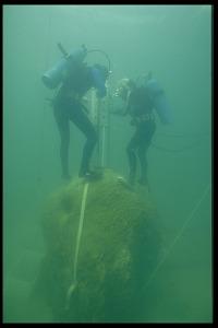 Image of Underwater Coral Study with Marine Biologist Hector M. Guzman, Panama, STRI