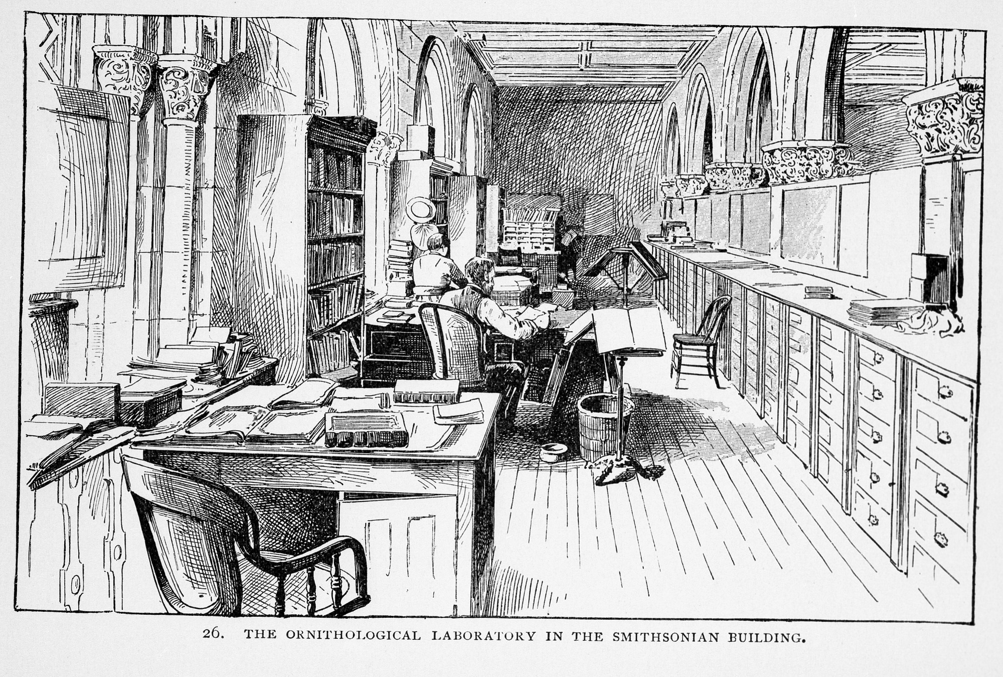Ornithological Lab, SI Building, by Unknown, 1886, Smithsonian Archives - History Div, 95-20349.