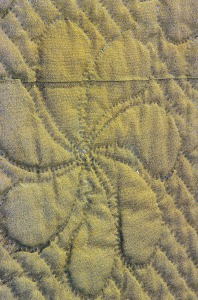 images for 1780 - 1820 Wool Quilt-thumbnail 2