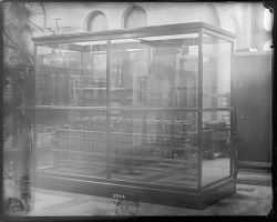 Exhibit Case at the United States National Museum