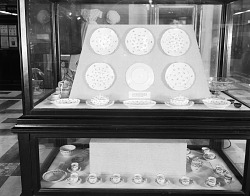 Exhibit of China Used by John Adams
