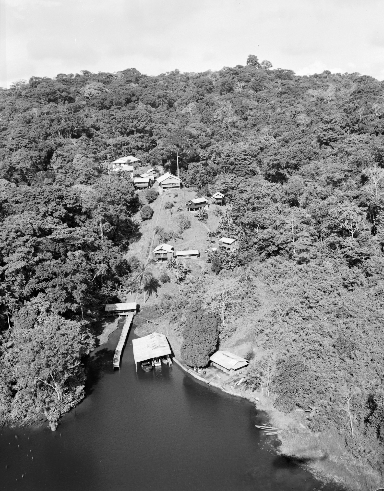 Jul 16 Aerial View of Canal Zone Biological Area, 1950s