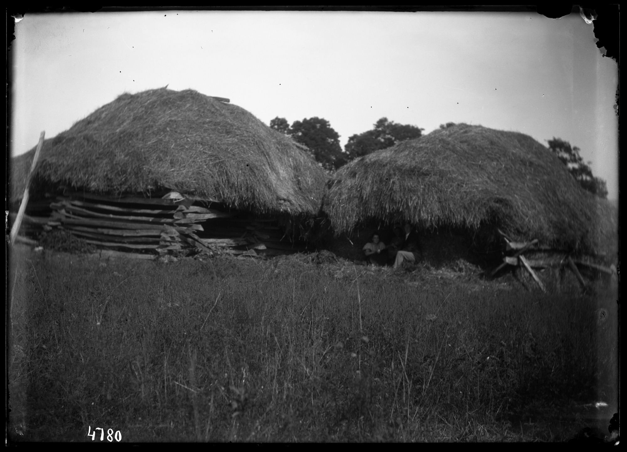 Unidentified Farm, 1880, Smithsonian Institution Archives, SIA Acc. 11-006 [MAH-4780].