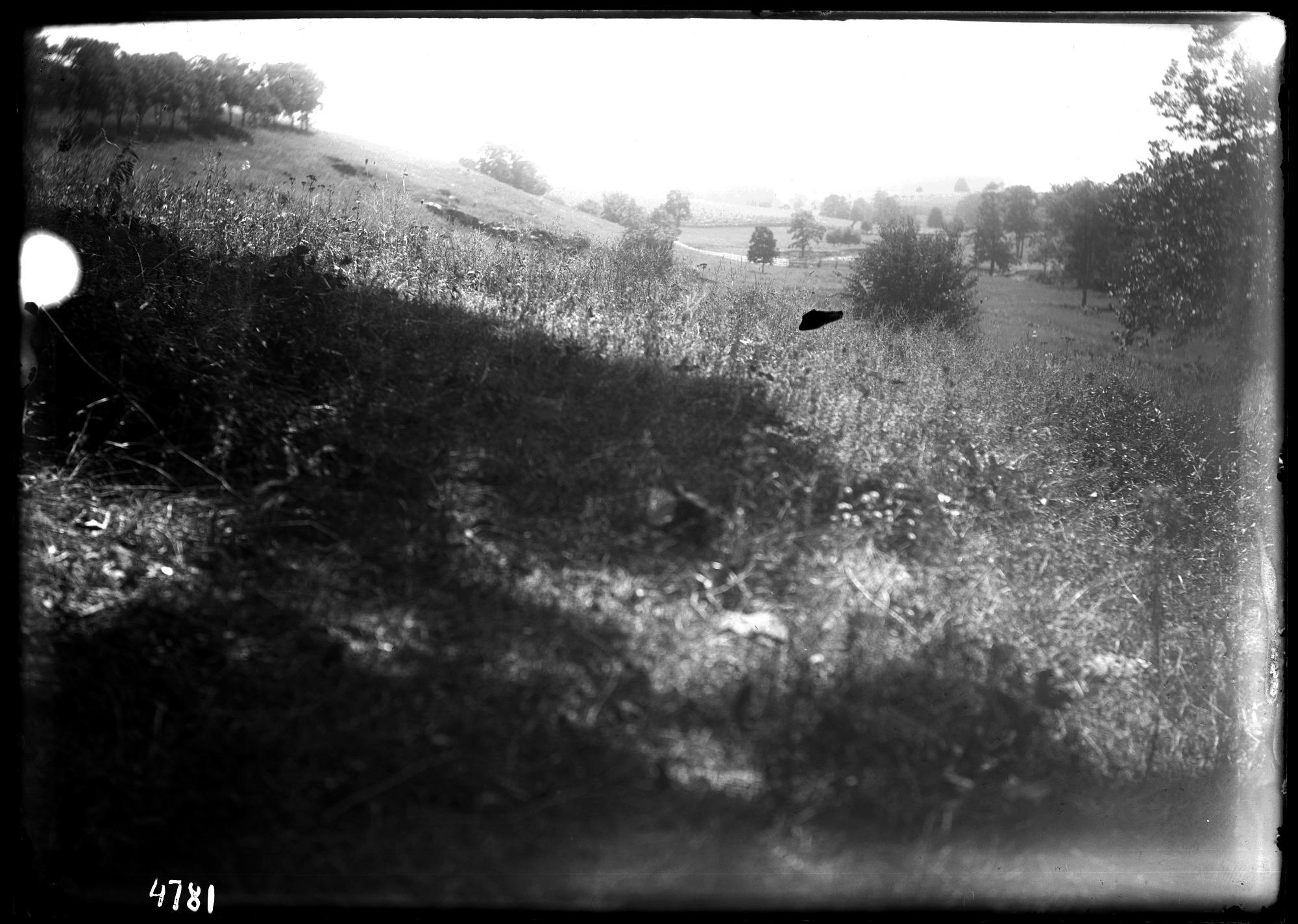 Unidentified Farm, 1880, Smithsonian Institution Archives, SIA Acc. 11-006 [MAH-4781].