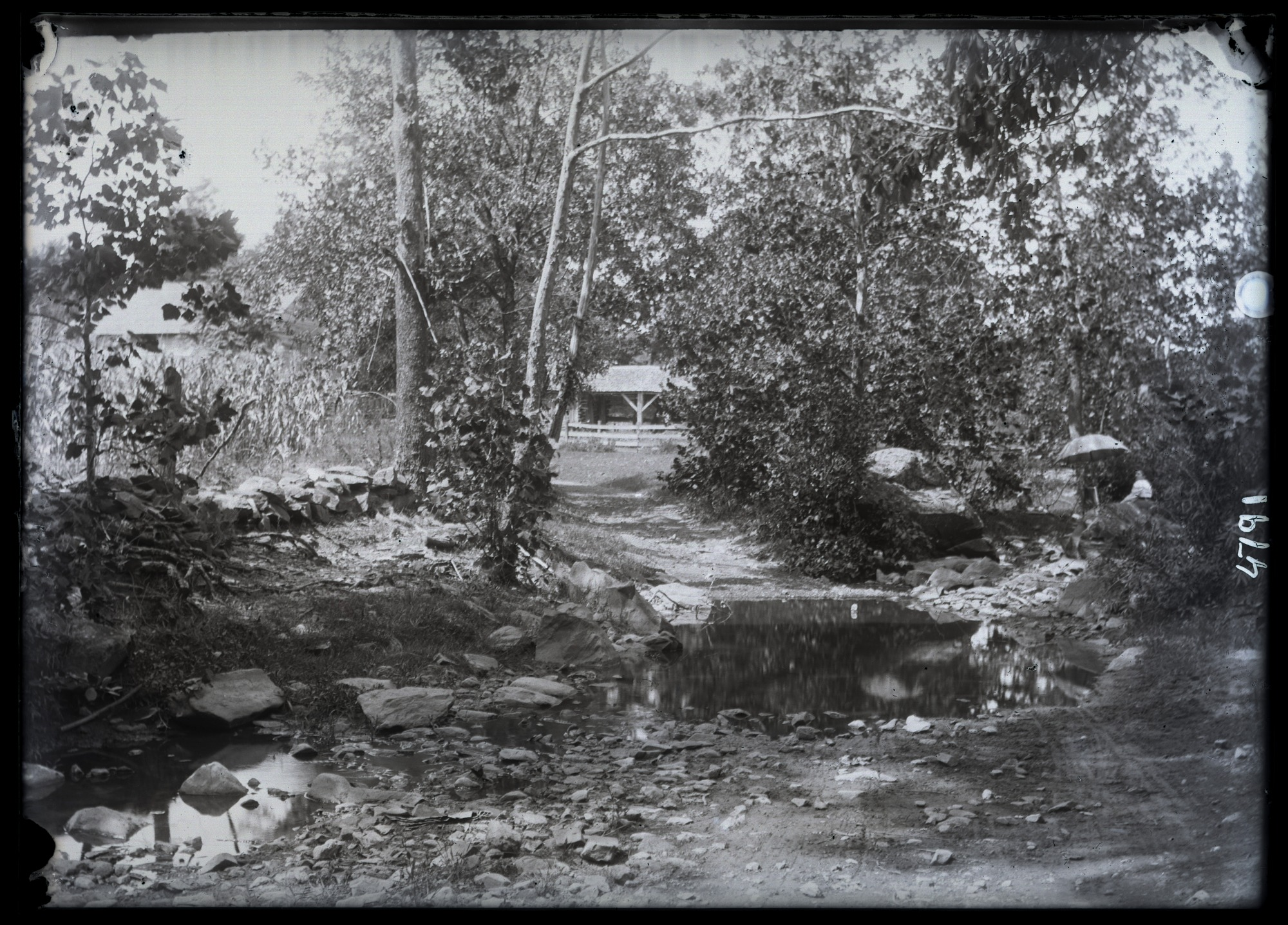 Unidentified Farm, 1880, Smithsonian Institution Archives, SIA Acc. 11-006 [MAH-4791].