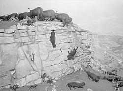 """Blackfoot Indian Buffalo Drive"" Diorama"