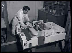 Unidentified Staff Member with Model of Exhibit