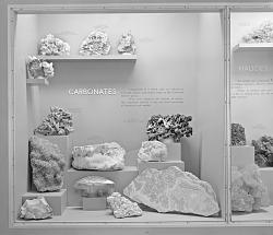 """""""Carbonates"""" Exhibit"""