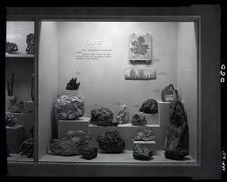 """Oxides"" Exhibit Case"
