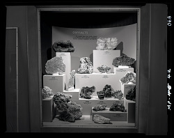 """Oxysalts"" Exhibit Case"
