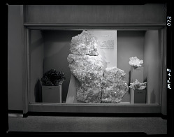 """Quartz"" Exhibit Case"