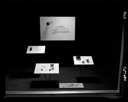 """Chrysoberyl"" Exhibit Case"
