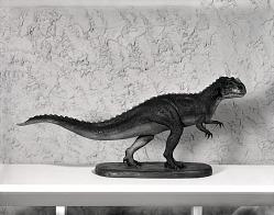 Ceratosaurus Nasicornis Model