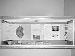 """Nature's History Book"" Exhibit"
