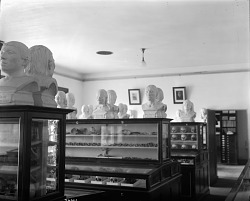 Department of Physical Anthropology, 1911