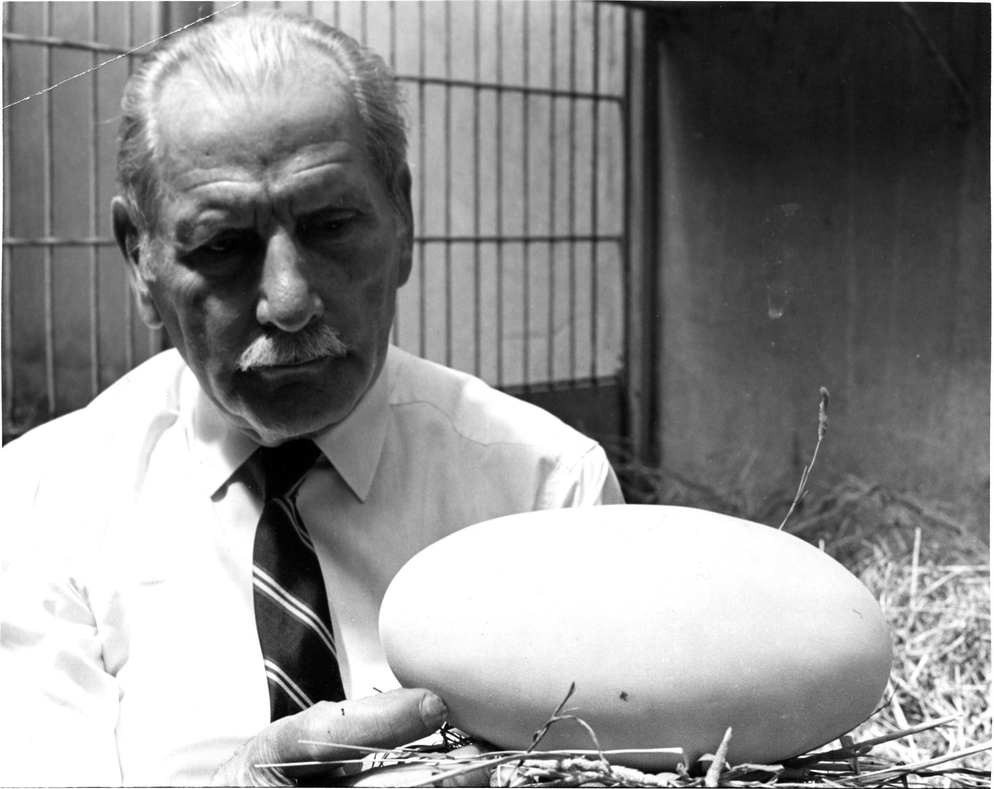 Louis Paul Jonas with the Enormous Egg