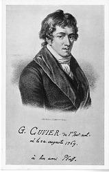 Georges LTopold ChrTtien FrTdTric Dagobert Cuvier (1769-1832)