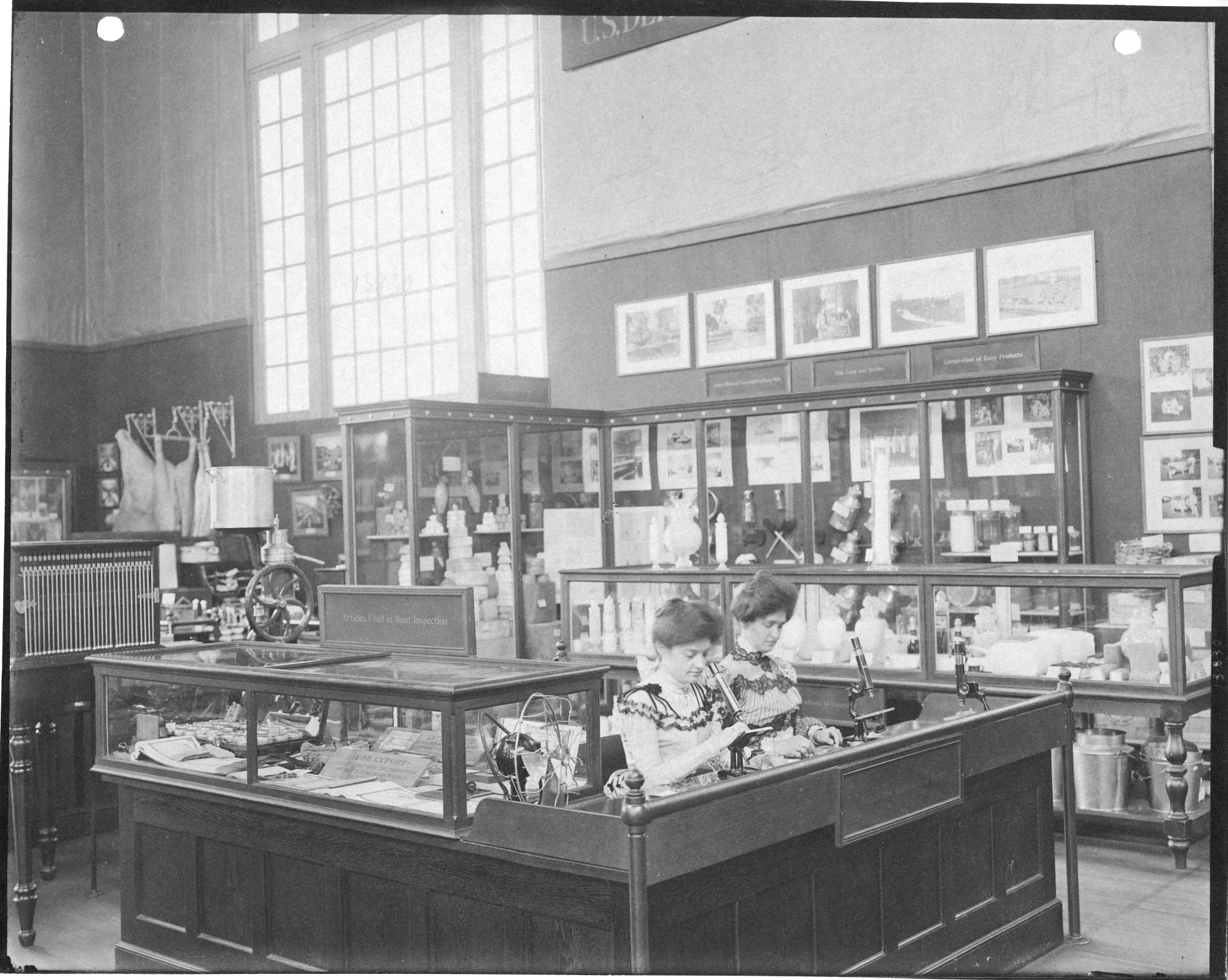 Pan-American Exposition, Buffalo, New York, 1901, Department of Agriculture display, food and drug inspections