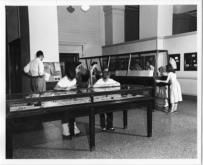 Visitors in National Museum