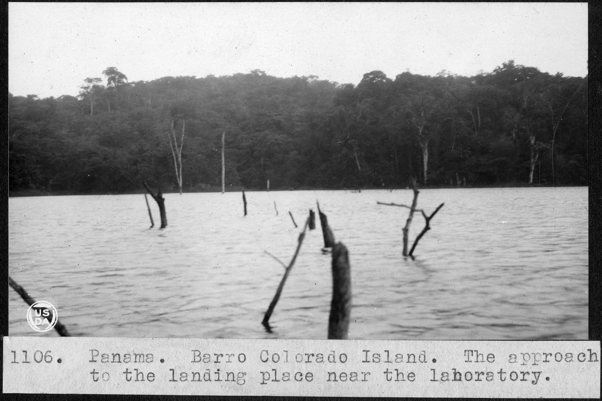 Barro Colorado Island -- The Approach to the Landing