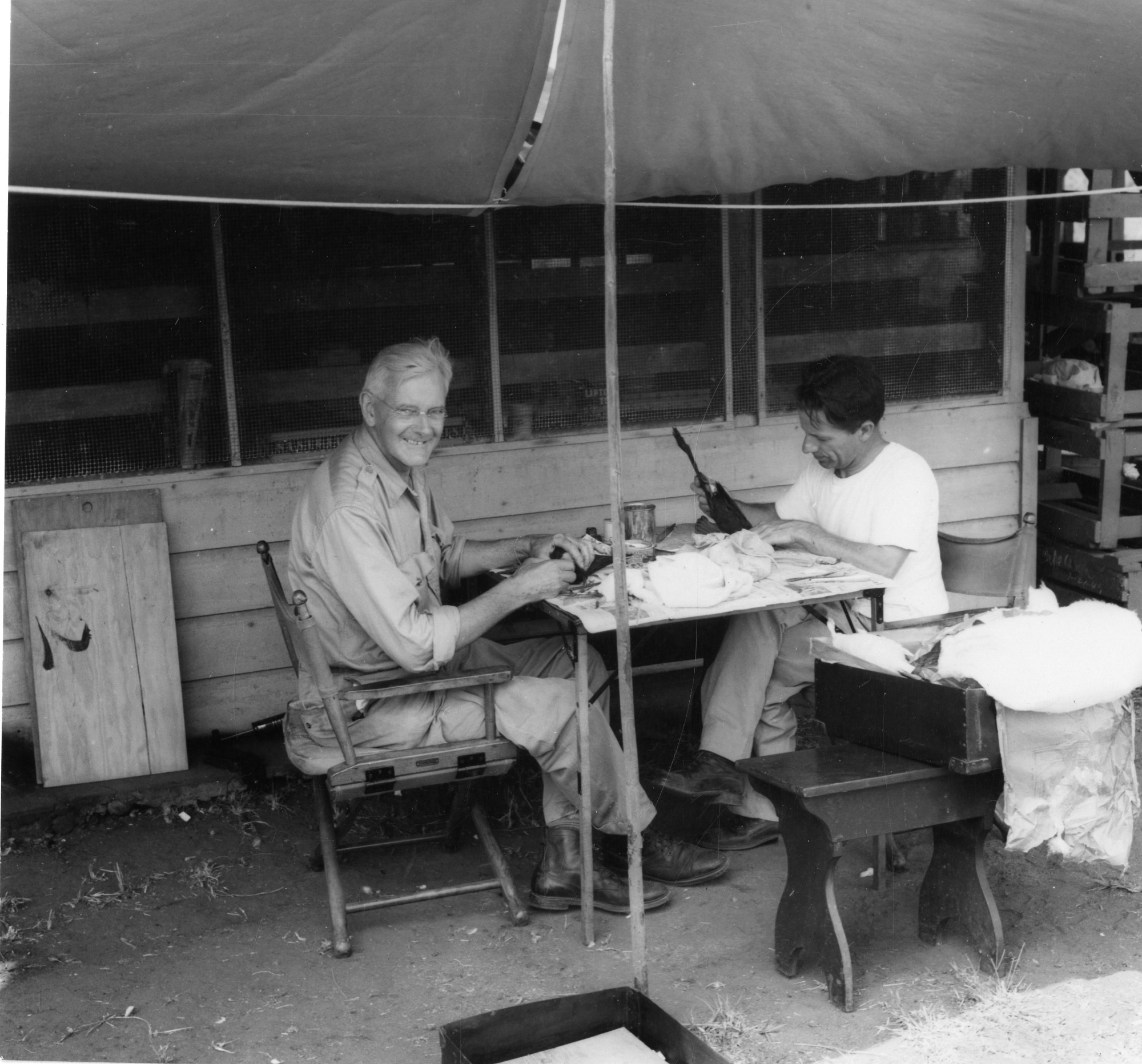 Wetmore and Perrygo near Chico, Panama, 1949