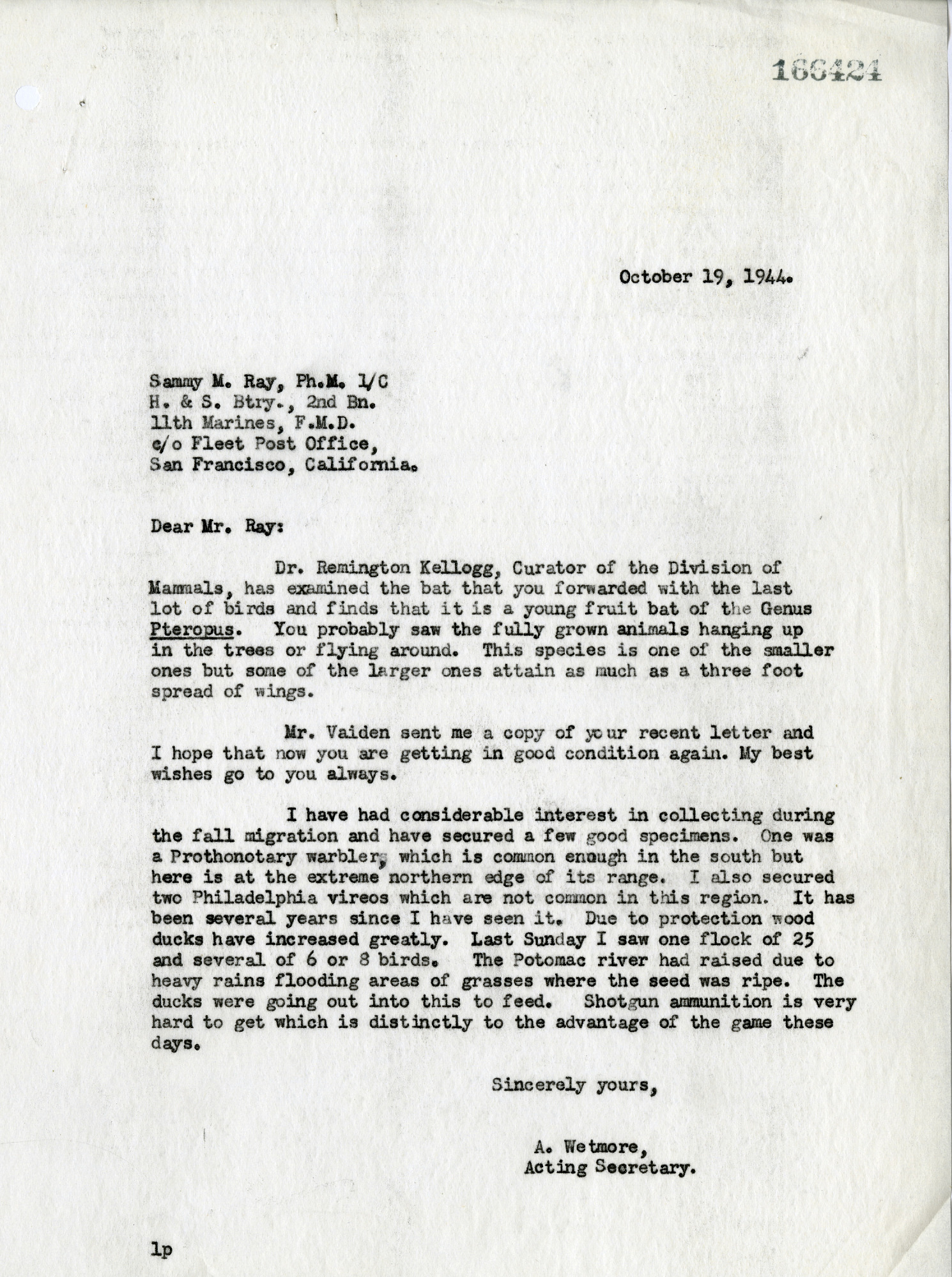 Letter from Alexander Wetmore to Sammy Ray