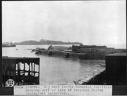 Bay Near Gorgas Memorial Institute in Panama