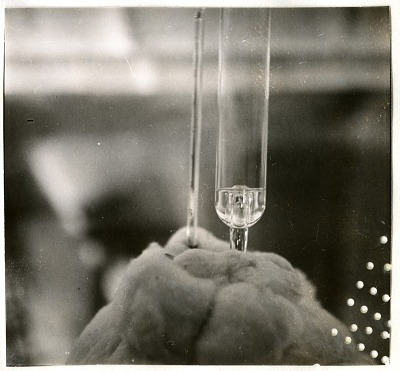 Glass Test Tube Used for Scientific Experiment