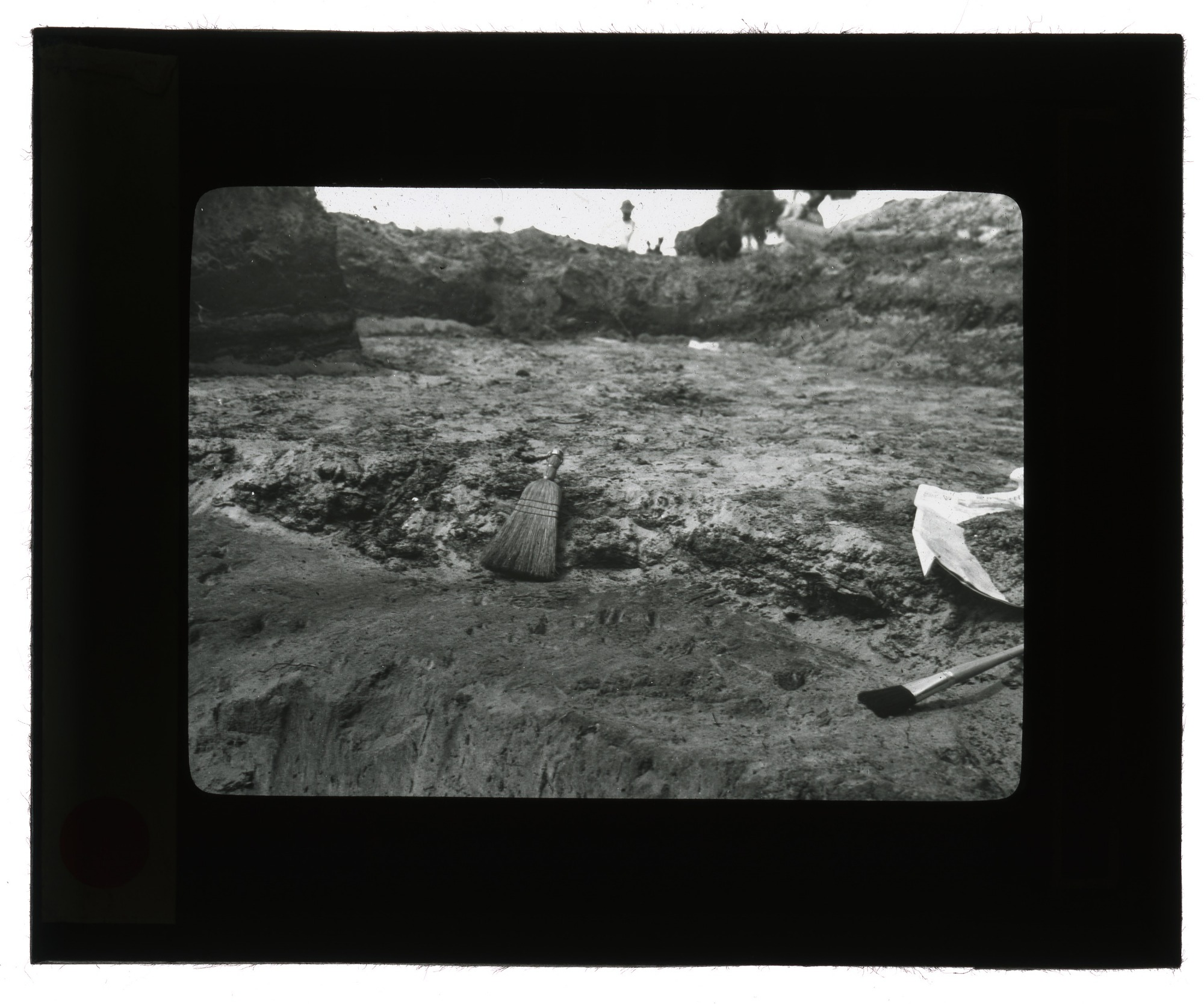Paleontological Expedition Site