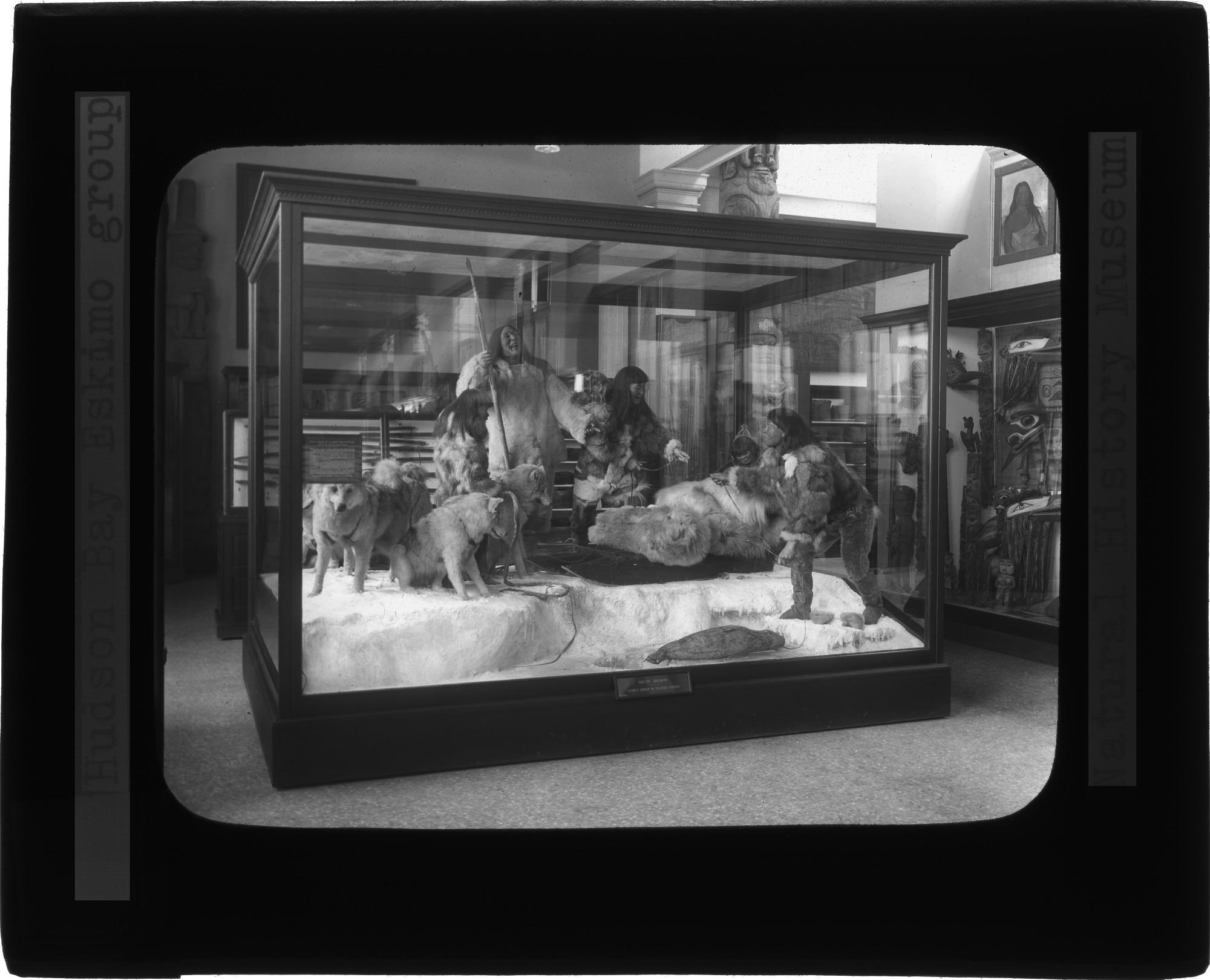Hudson Bay Eskimo Group - Natural History Museum