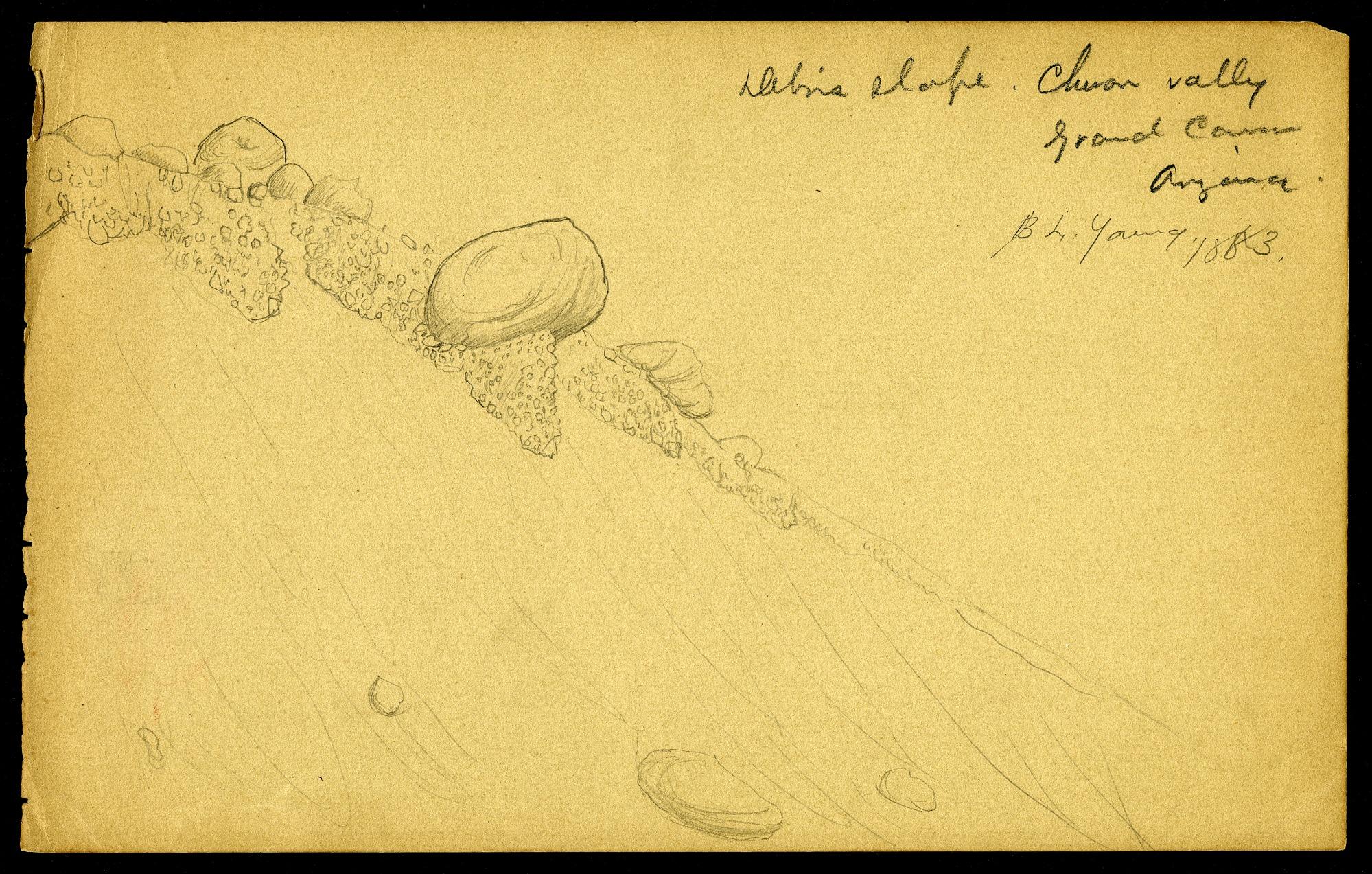 Drawings, circa 1883, 1883, Smithsonian Field Book Project, SIA RU007004.