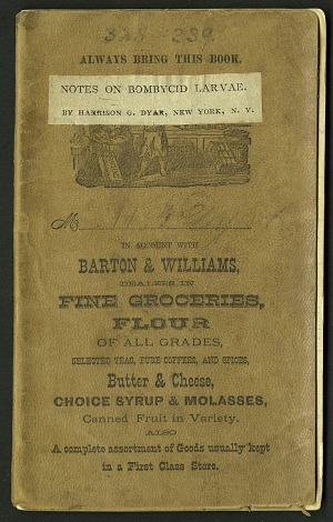 H. G. Dyar bluebook 325 - 339, 1891-1899, Smithsonian Field Book Project, SIA Acc. 12-447.