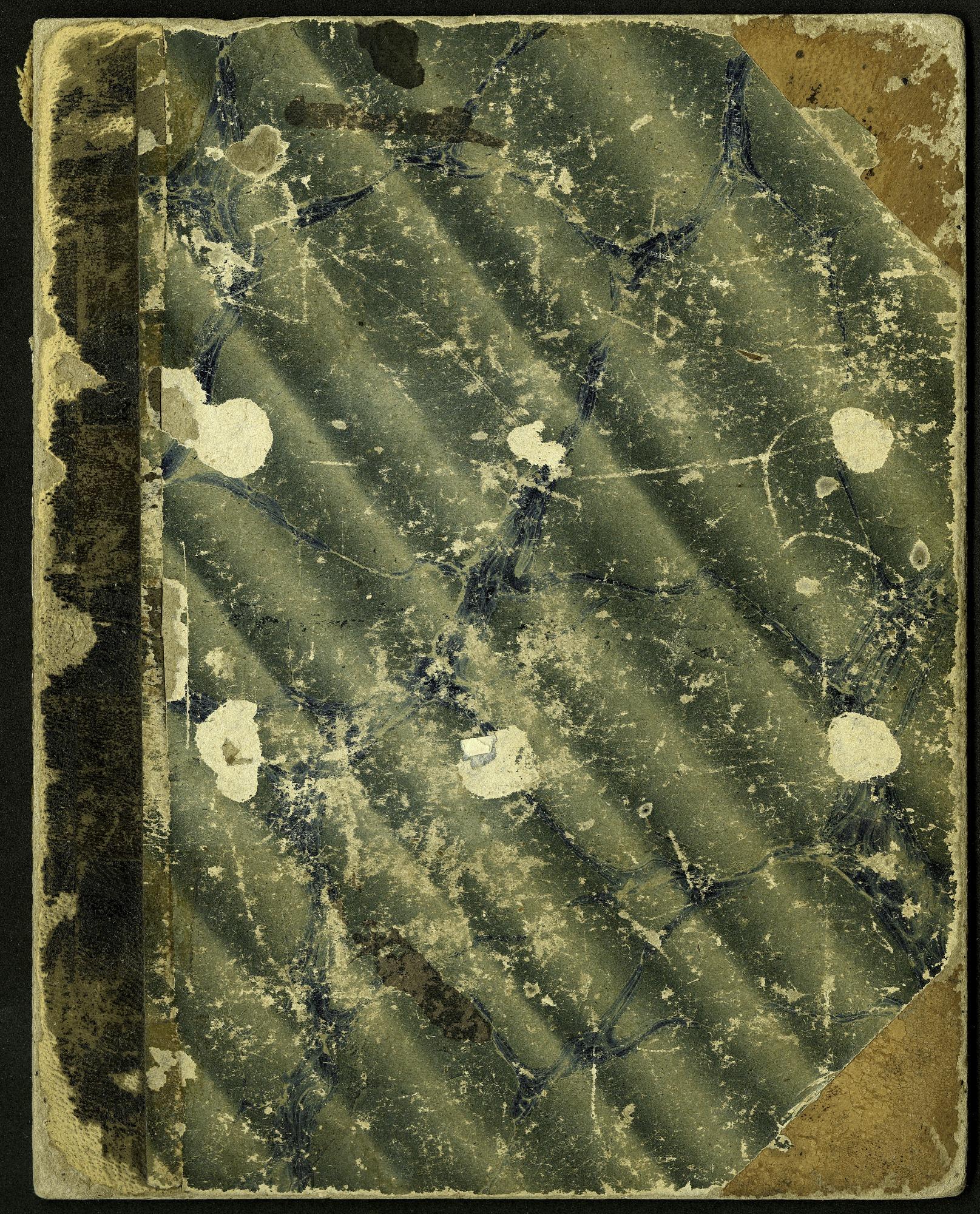 Mary Henry Diary, 1864-1868
