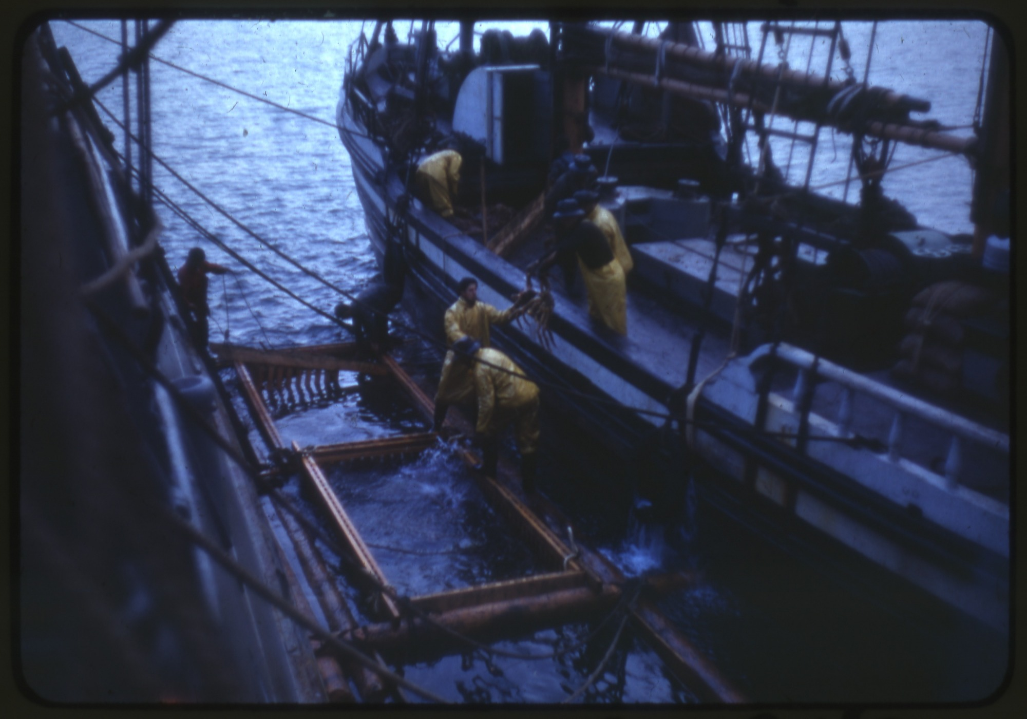 Canoe Bay Crab Cages, Smithsonian Institution Archives, SIA RU007231 [SIA2013-06635].