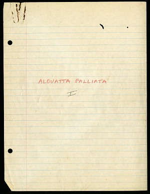 Alouatta (Primates), Barro Colorado Island, Panama, 1958-1960