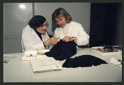 Roxie Laybourne and Carla Dove Holding Black Vulture Remains