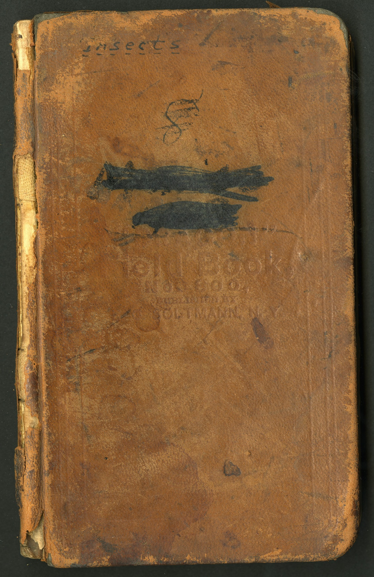 Field notes by William M. Mann, Fiji and British Solomon Islands, 1915-1916