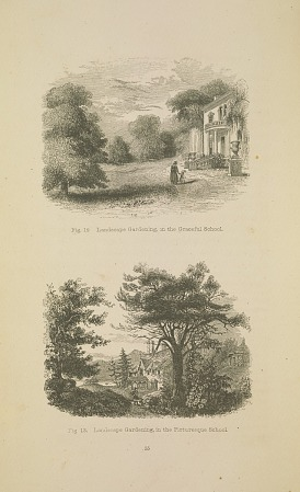 """Graceful"" and ""Picturesque"" landscapes From A.J. Downing, A Treatise on the Theory and Practice of Landscape Gardening"