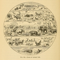 Zones of animal life from Comparative zoology, structural and systematic.