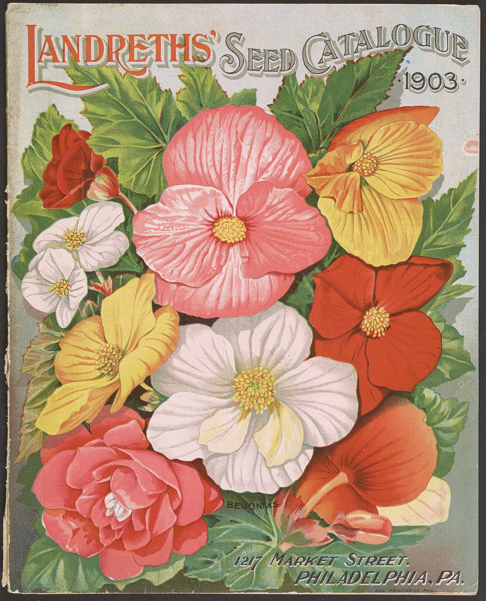 D. Landreth & Sons, Landreth Seeds, 1903