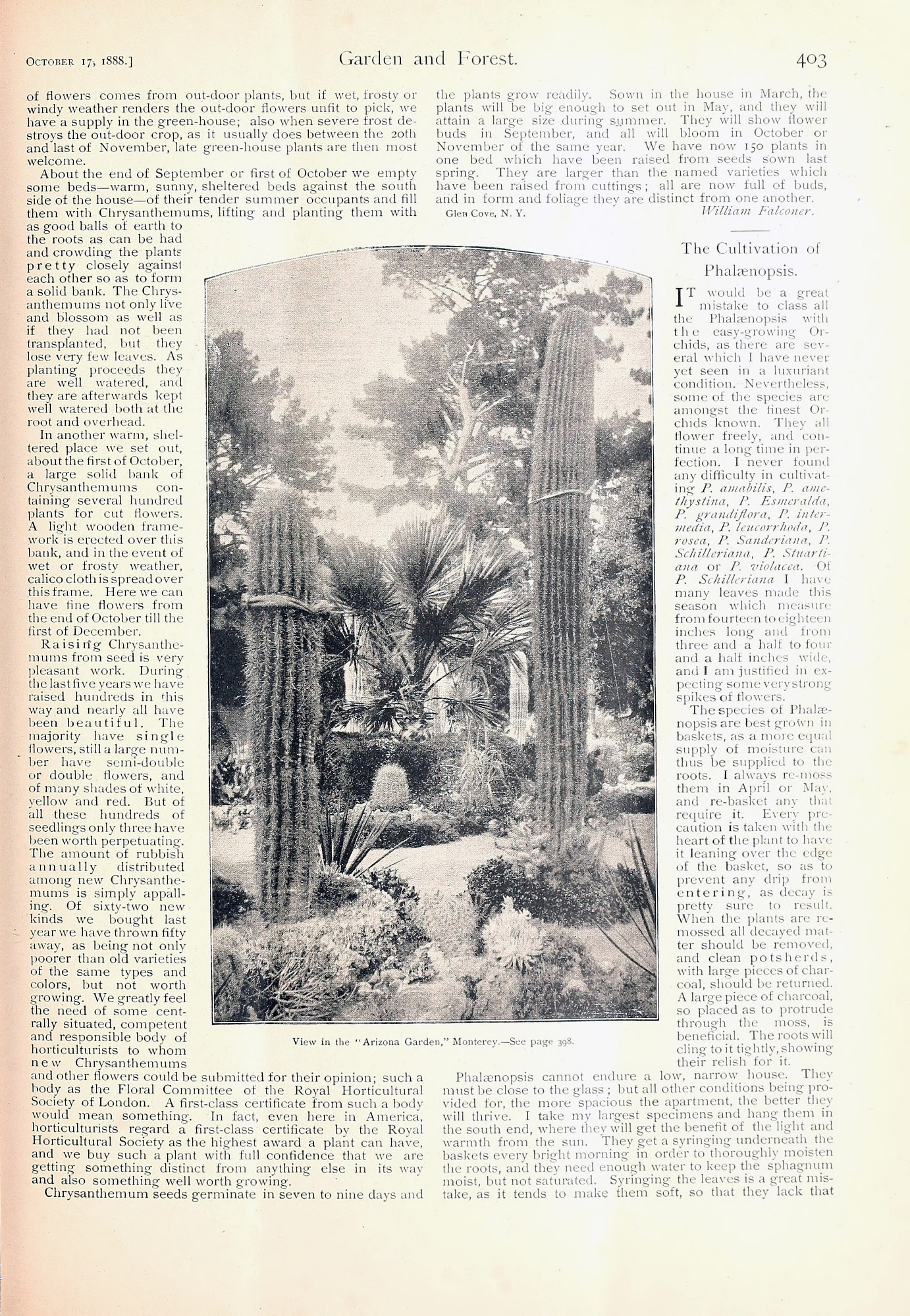 Garden and Forest, a weekly journal begun by Sargent, ran for a decade (1888–1897), covering topics ranging from horticulture, gardening, and landscape design to cemeteries and town planning.