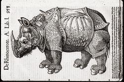 Mammals: Unstacked