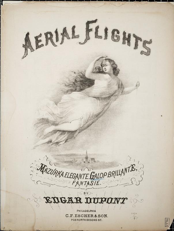 Image for Aerial flight : galop brillante / Edgar Dupont