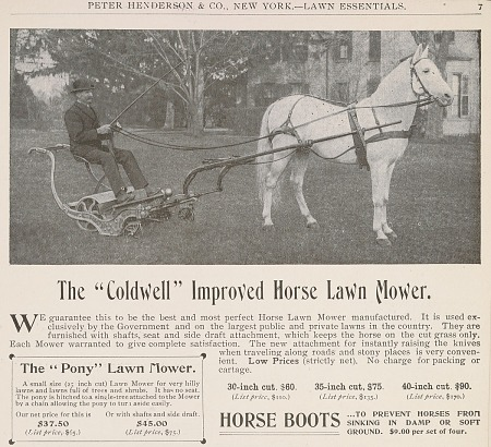 Horse-drawn lawn mower