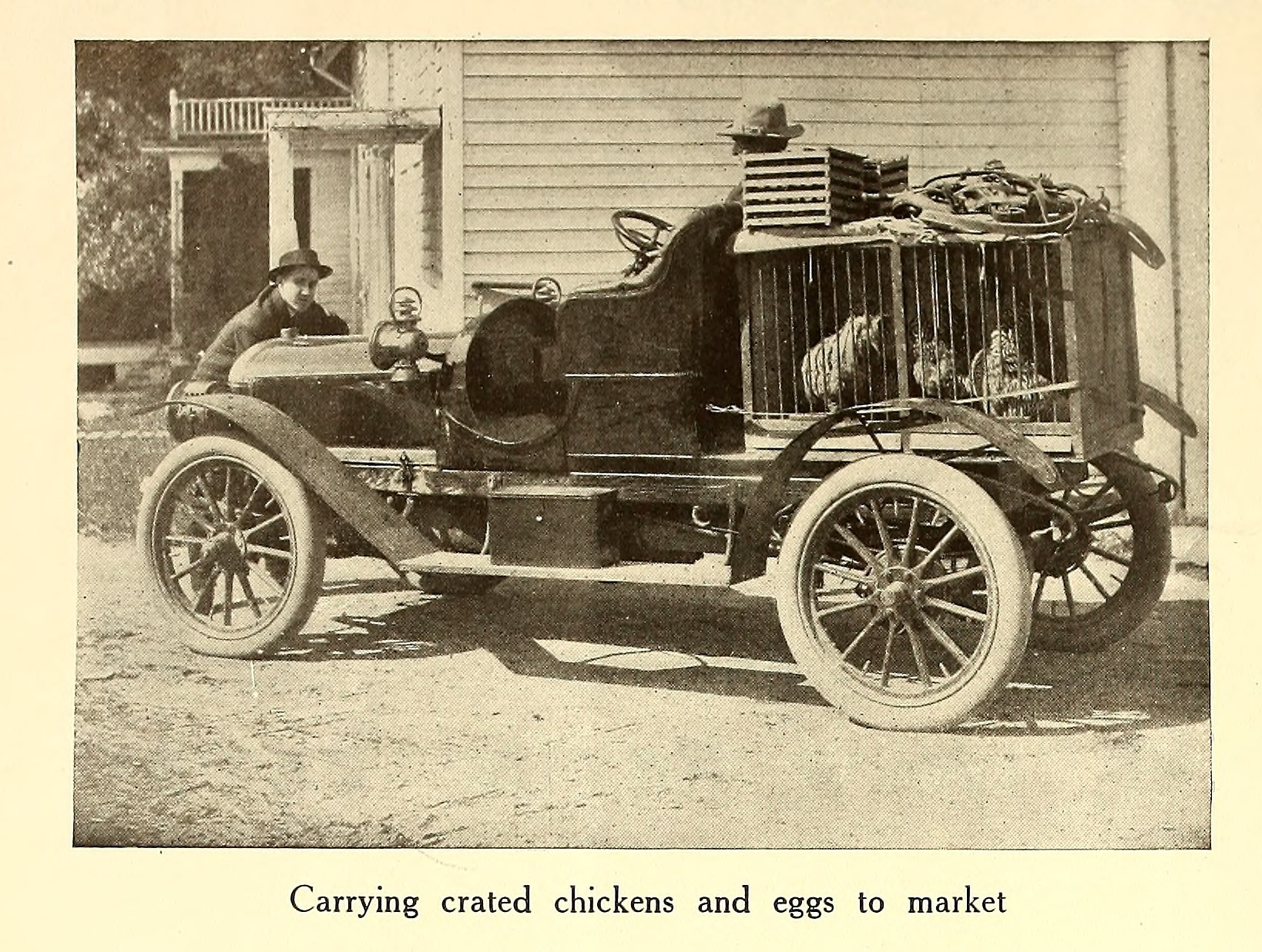 Carrying crated chickens and eggs to market from American homes and ...