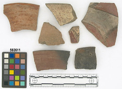 Ñaupe surface - rim and decorated sherd