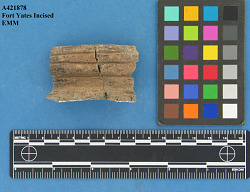 Rim sherds, incl. Type Sherd Misc. Fort Yates, Fort Yates Incised Type, Fort Yates Cord Impressed