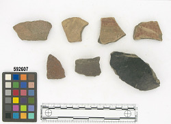 Ñaupe surface/top of mound - body sherd